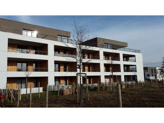 Appartement 3 pièces 63 m2 Vendenheim